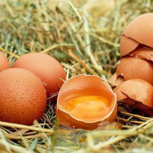 「卵殻膜」化粧品が年齢肌にアプローチ!オススメの卵殻膜化粧品5選