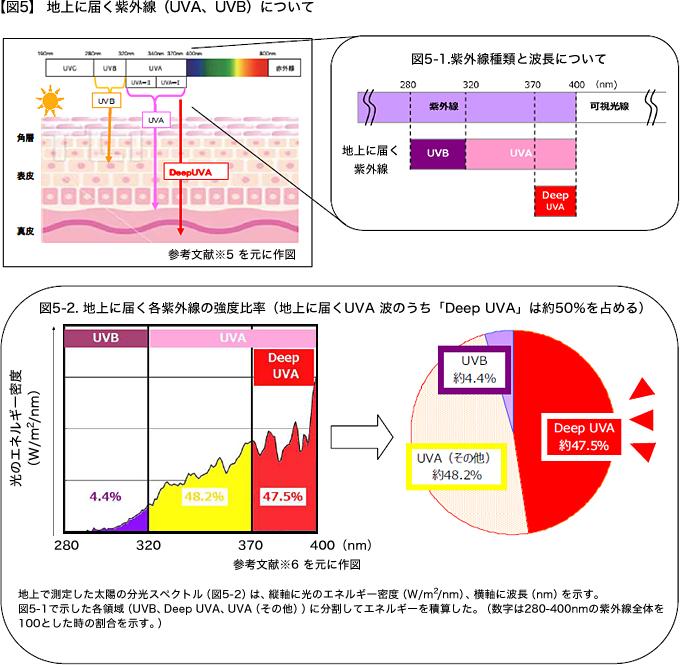 地上に届く紫外線について(FUJIFILM発表)