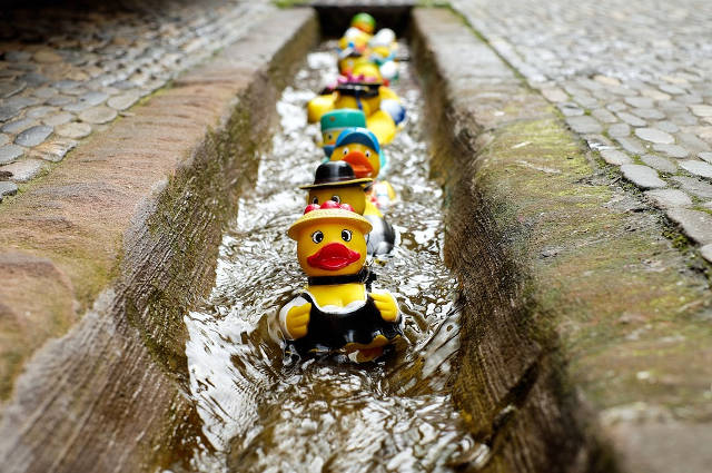 水の流れに乗るアヒルの玩具
