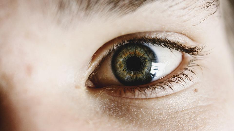 緑色の瞳の女性の目元のアップ