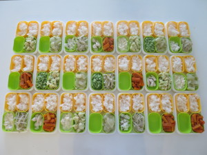 freezing-baby-food02