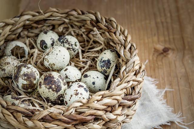 シミのような模様のウズラの卵