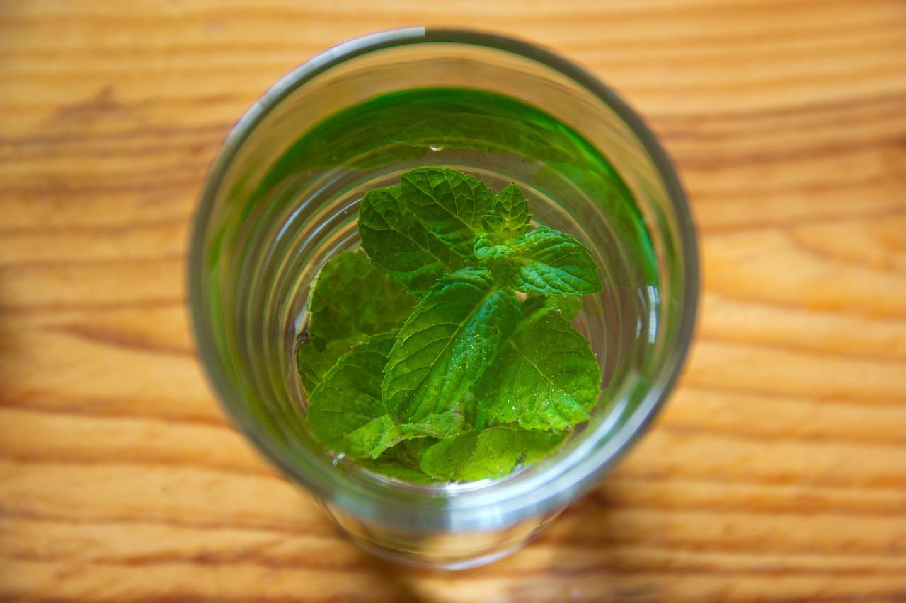 精油が入ったグラスに浮かぶミントの葉
