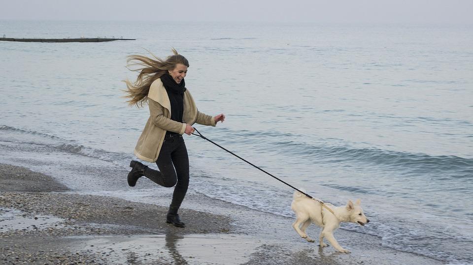 犬と散歩を楽しむ女性