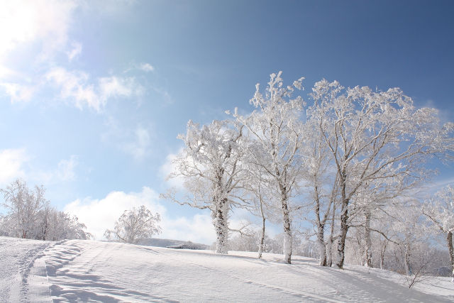 北海道函館市七飯町の七飯スキー場の風景