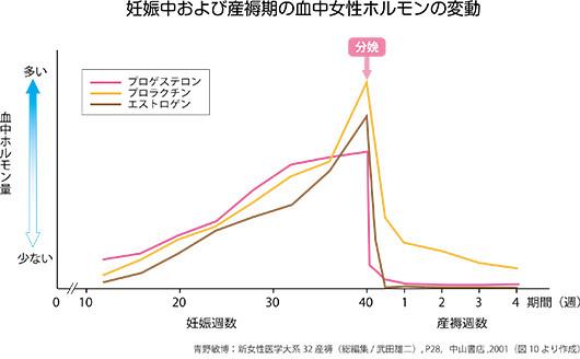 妊娠中から産後にかけての女性ホルモンの変動グラフ