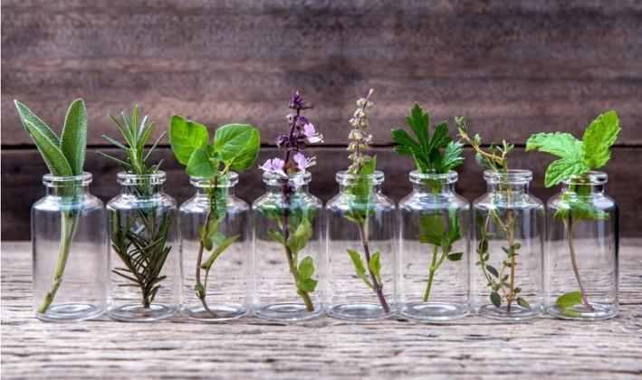 ボトルに入ったアロマ植物