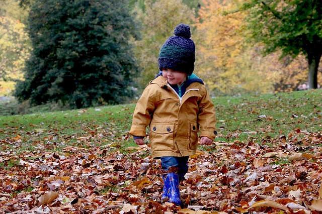 落ち葉の上を歩く男の子