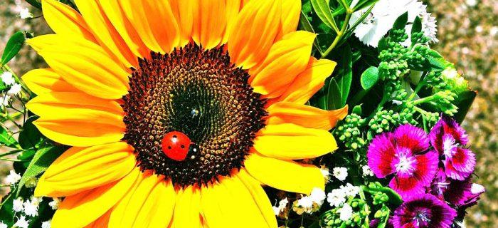 夏のメイク崩れを防ぐ裏ワザ10選!汗・湿気・紫外線の対策方法